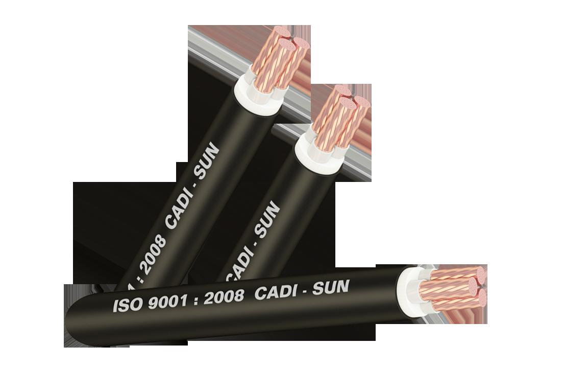 Dây cáp đồng CU/XLPE/PVC CXV 3x
